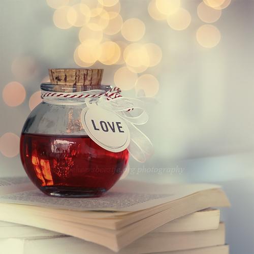 love_bottle_by_lieveheersbeestje-d4i0asc