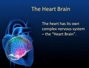 heart-brain-coaching-image-